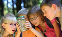 KidCheck Secure Children's Check-In shares The Importance of Summer Camp Safety